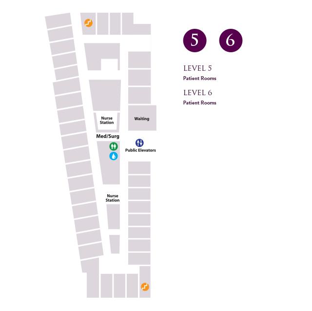 Map - Level 5 & Level 6